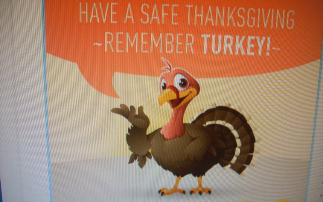 Thanksgiving Safety Courtesy of American Safety Council