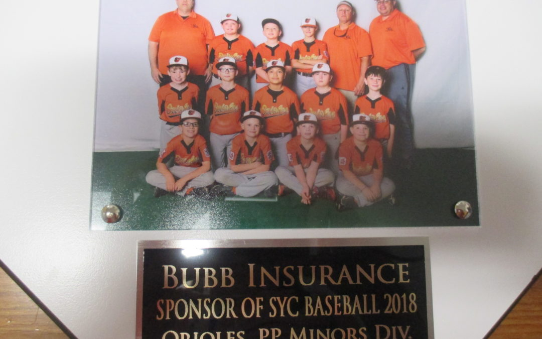 2018 SYC Orioles Baseball Team
